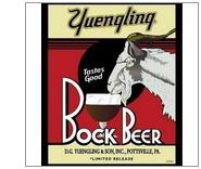 Yuengling-Bock-Beer